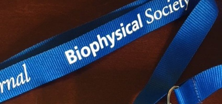 Biophysical Society's 62nd Annual Meeting